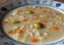 Zeleninová s vločkami - polévka