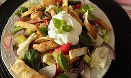 Zeleninový salát s teplým krůtím masem