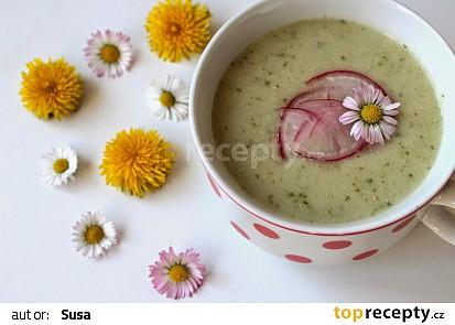 Jarní ředkvičková polévka s ricottou