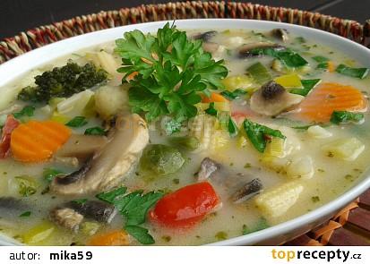 Zeleninovo-žampionová polévka