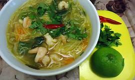 Krevetová (kuřecí) polévka s rýžovými nudlemi