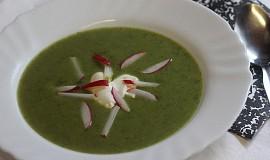 Ředkvičková polévka s celerem