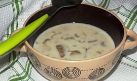 Rychlá žampionová polévka