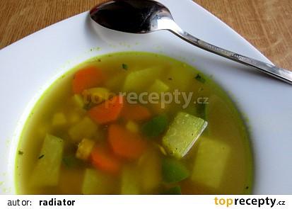 Zeleninová pikantní polévka