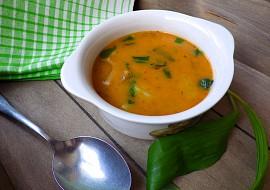 Pikantní polévka z hlívy s medvědím česnekem