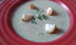 Žampionová polévka s krutonky