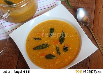 Batátová polévka s pohankou a šalvějí