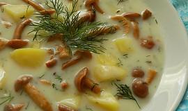 Brynzová polévka s houbami a koprem