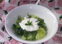Okurkový salát se šruchou zelnou