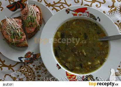 Čočková polévka od kocoura