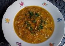 Zeleninová polévka s drožďovou zavářkou