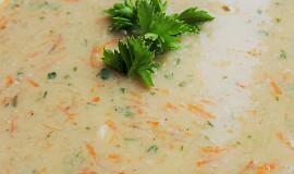 Rybí polévka z mlíčí (bez tuku)
