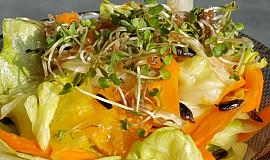 Salát s naklíčenou rucolou a slunečnicovými semínky