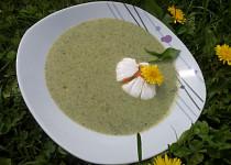 Pampelišková polévka podle Lidušky