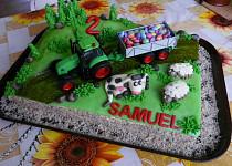 Dort s traktorem (s hračkou)