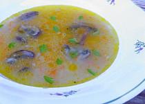 Velerychlá zeleninová polévka se žampiony
