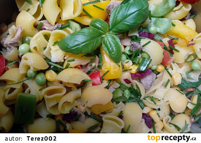 Barevný těstovinový salát ze zahrady