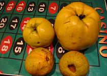 Domácí pektin z nezralých jablek