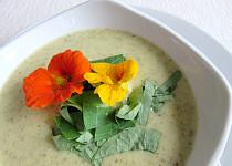 Krémová polévka z římského salátu a lichořeřišnice (kapucín)