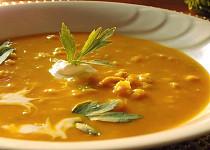 Drožďová polévka s dýni a kapáním