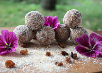 Kokosové tsampa koule s rozinkami