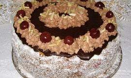 Dort s čokoládou a višněmi