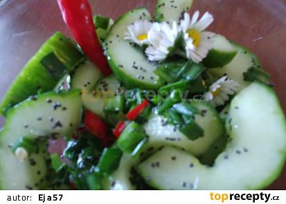 Okurkový salát s mákem