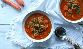 Polévka s červenou čočkou II