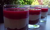 Smetanový pohár s celozrnnými sušenkami a malinovým želé