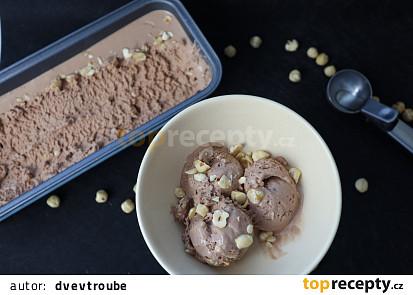 Domácí nutellová zmrzlina