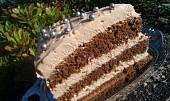 Cappuccino dort / řez - snadno a rychle