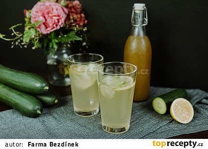 """Okurková """"Bezdínkovská"""" limonáda"""