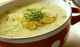 Okurková polévka s koprem - vařená