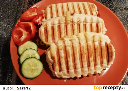 Falešné panini