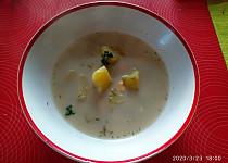 Jemná koprová polévka