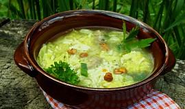 Kapustová polévka s rýží a houbami