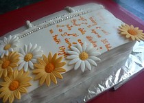 Kniha -  dort č. 4