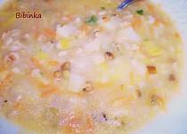 Zeleninovo-ovesná polévka s mungem