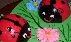 Čokoládový dort s beruškami