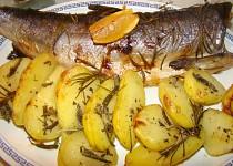 Losos s citrónem, brambory s rozmarýnem a šalvějí, wakame salát