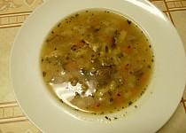 Rybí polévka s hříbky
