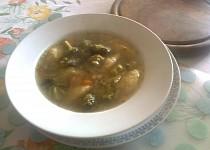 Brokolicová polévka se stonkovým celerem