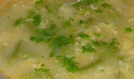 Letní fazolková polévka