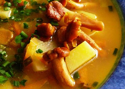 Polévka z lišek