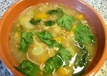 Masová polévka s pohankou a bylinkami