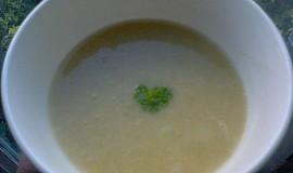 Cizrnová polévka s červenou čočkou