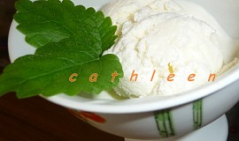 Smetanovo - jogurtová zmrzlina