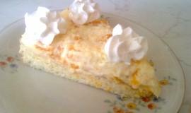 Třepací dort