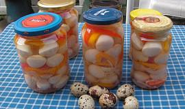 Nakládaná křepelčí vajíčka