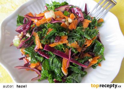 Zdravi salat z cerveneho zeli a kaderavku